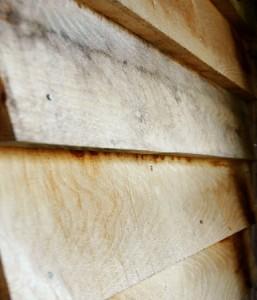 Weathered green oak feather edge | VFE1