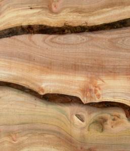 Elm waney edge | VWE1