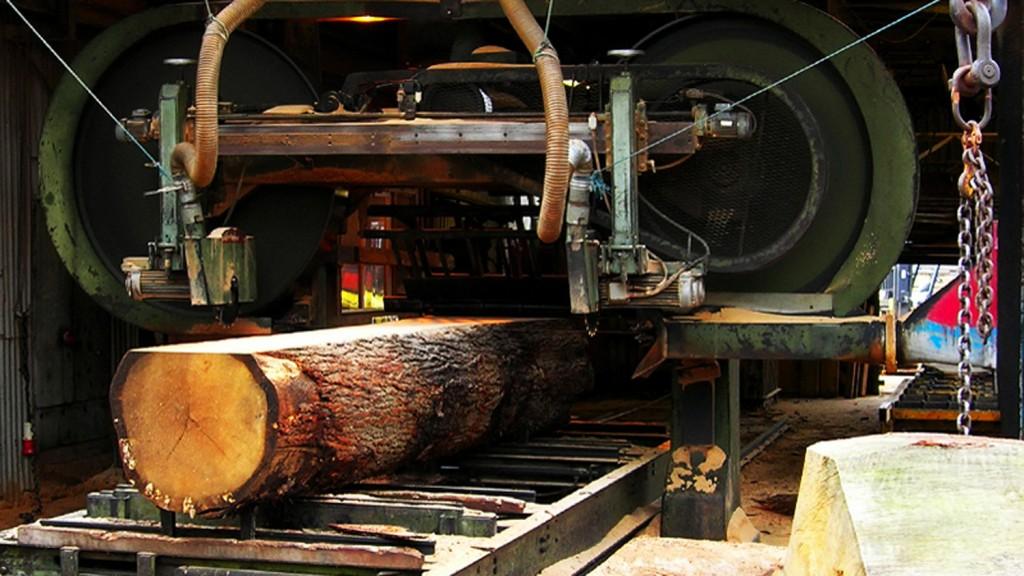 Planking a Prime English Oak Log