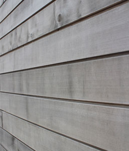 Weathered Brimstone Sycamore Cladding
