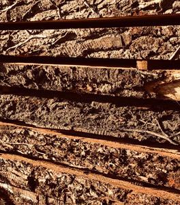 Prime/First Grade Oak