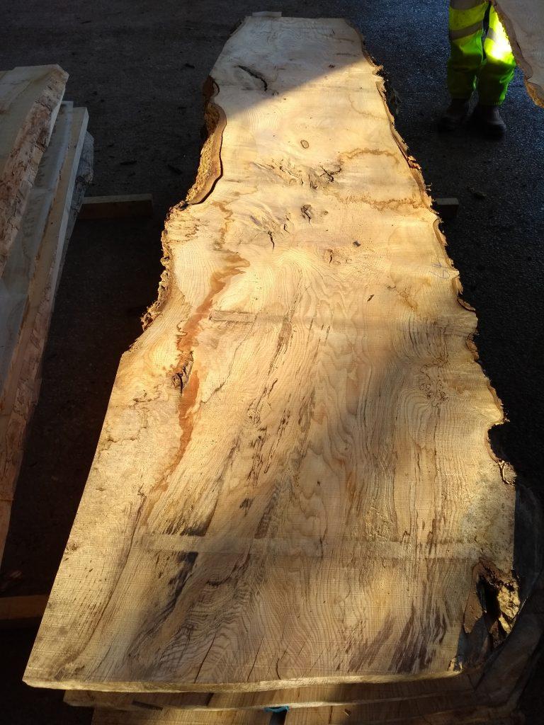 English Ash Pippy Swirly Grain 40141