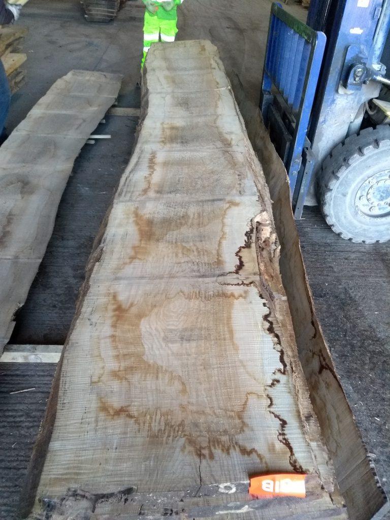 English Ash Log Ripple Q1