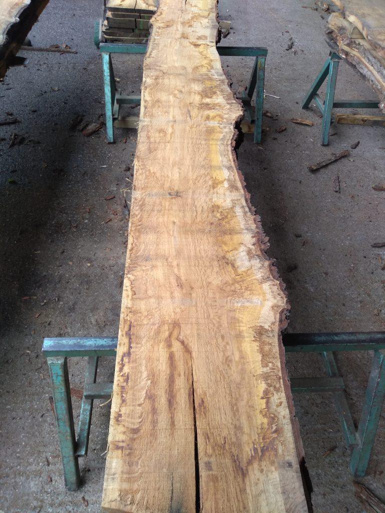 Heavy Pippy Tiger Brown Oak Log 00042