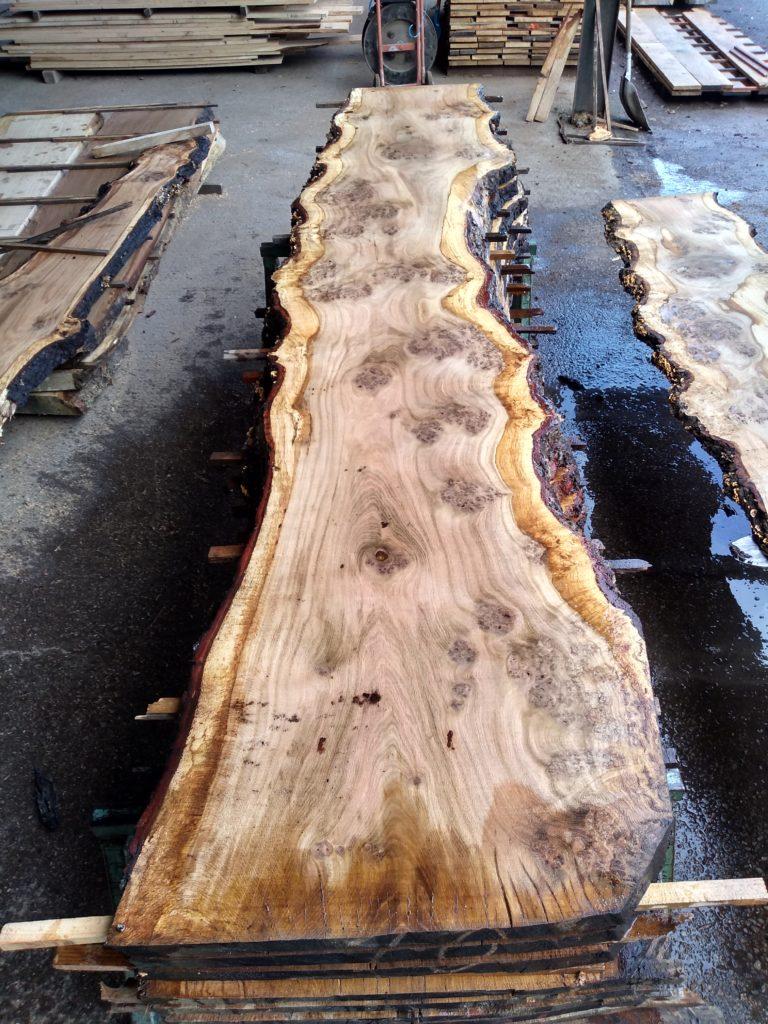 English Pippy Oak Log 00966 Fresh Sawn