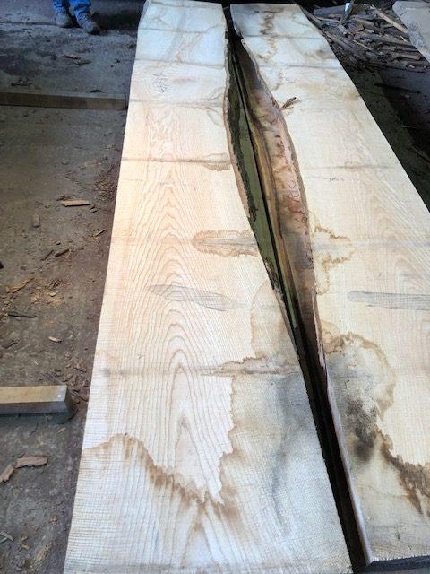 A rare log of fine Rippled English ash. 40834