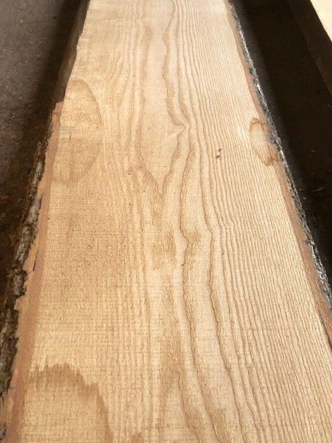 Prime English ash log. 40836