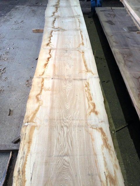 Wide ash log. 40135