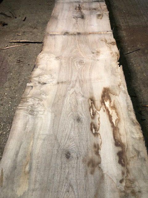 Pippy  / Character KD English ash log. 40123