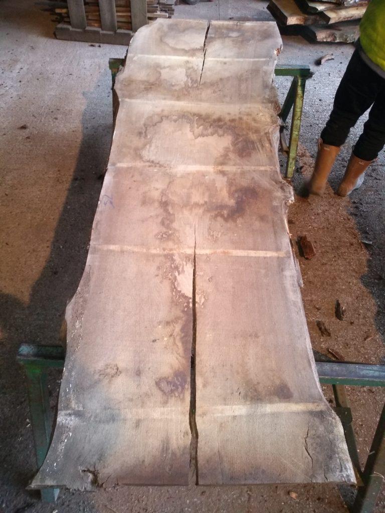 English Pippy Oak Log 00975