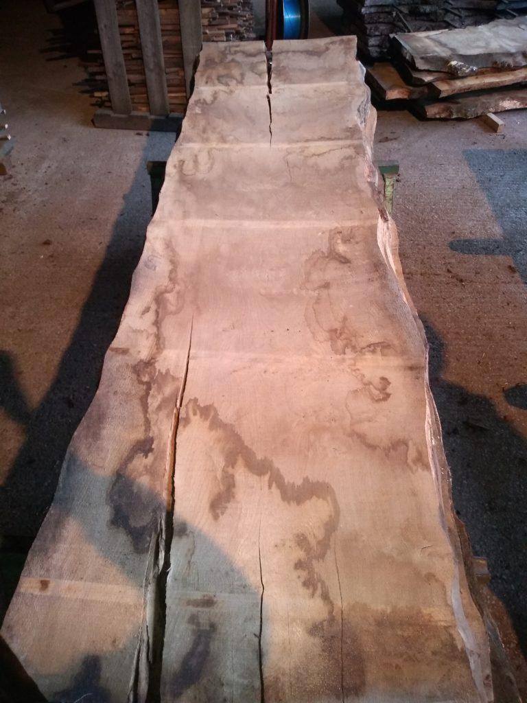 English Pippy Oak Log 00976