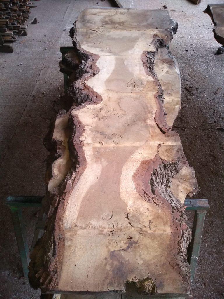 English Pippy Oak Log 00988