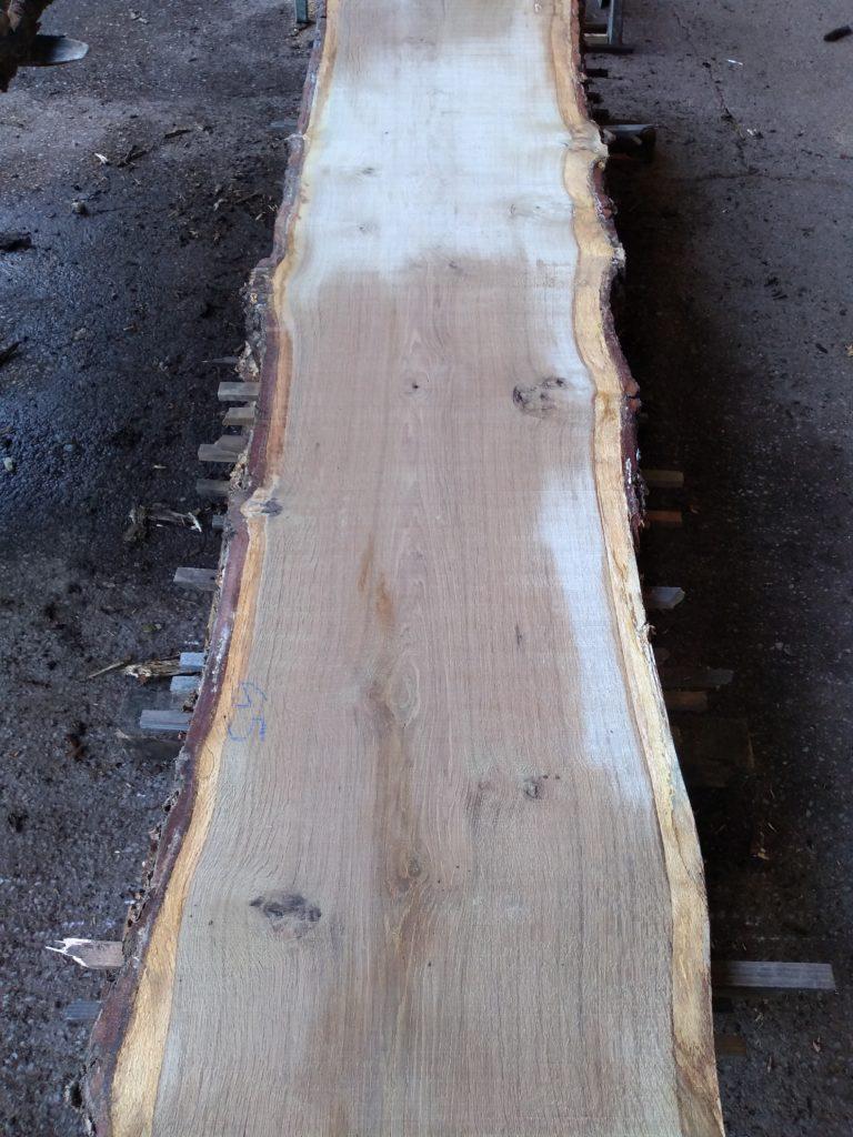 English Light Pippy Oak Log 00800 Fresh Sawn