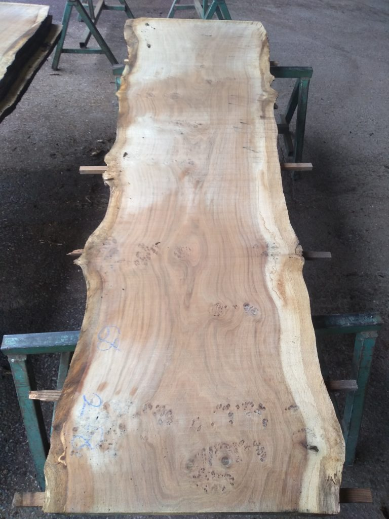 English Medium Pippy Oak Log 00325 Fresh Sawn