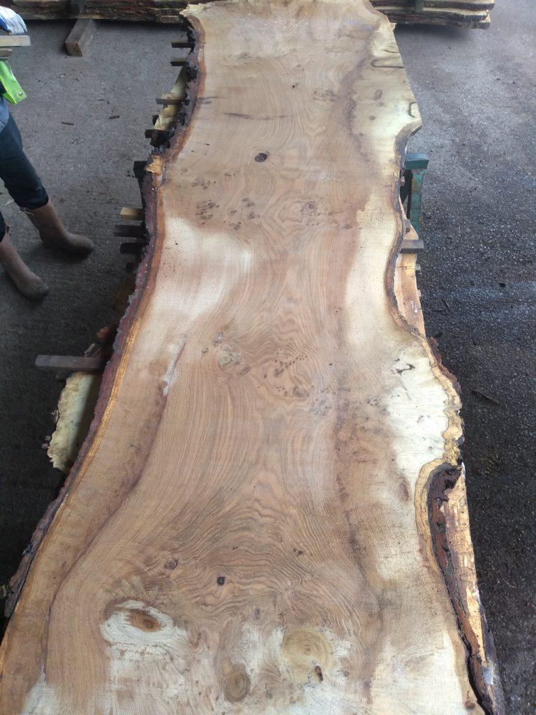 English Medium Pippy Oak Log 00326 Fresh Sawn
