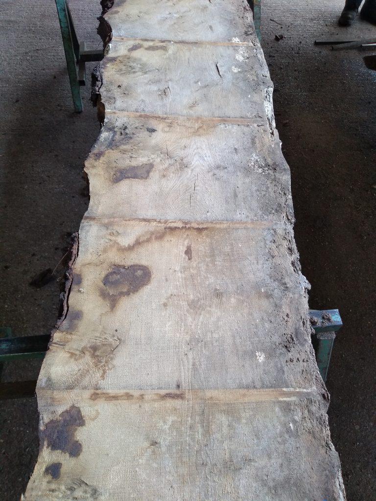 English Pippy Oak 00328