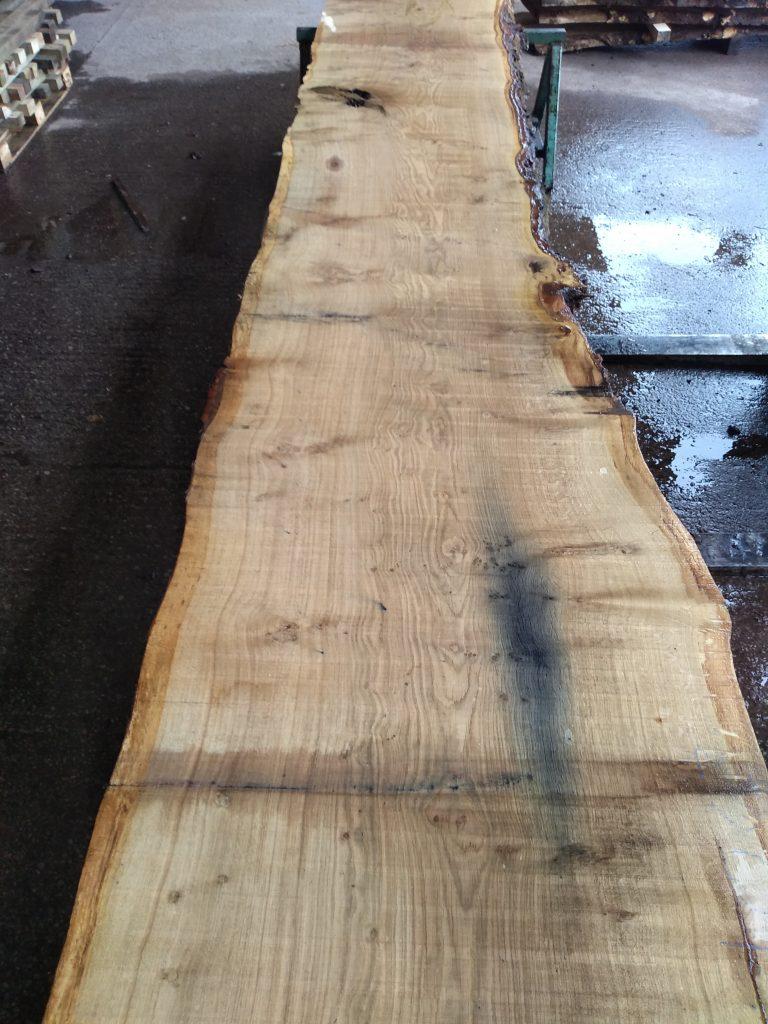 English Pippy Oak Log 00021 Fresh Sawn