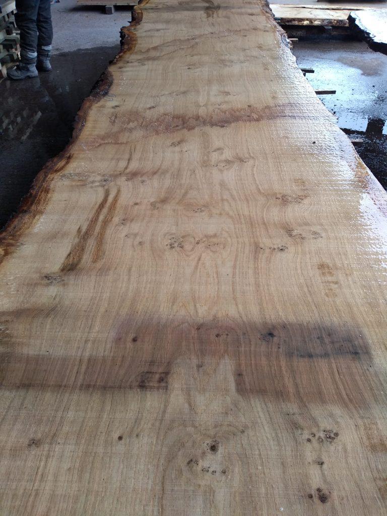 English Pippy Oak Log TBC Fresh Sawn