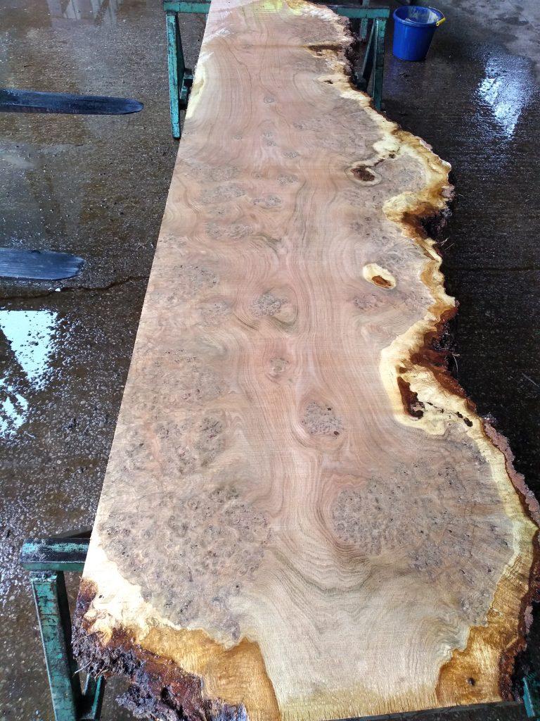 English Burr Oak 09493 Fresh Sawn