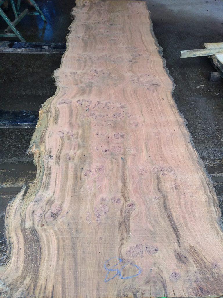 English Heavy Pippy Oak Log 09482 Fresh Sawn