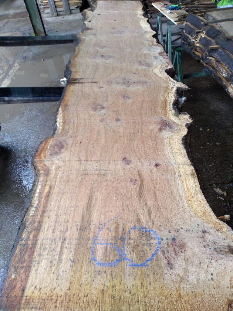 English Pippy Oak Log 00030 Fresh Sawn