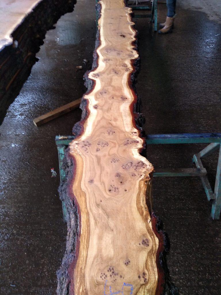 English Pippy Oak Log 09741 Fresh Sawn