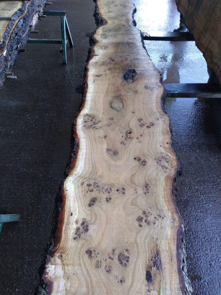 English Pippy Oak Log 00036 Fresh Sawn