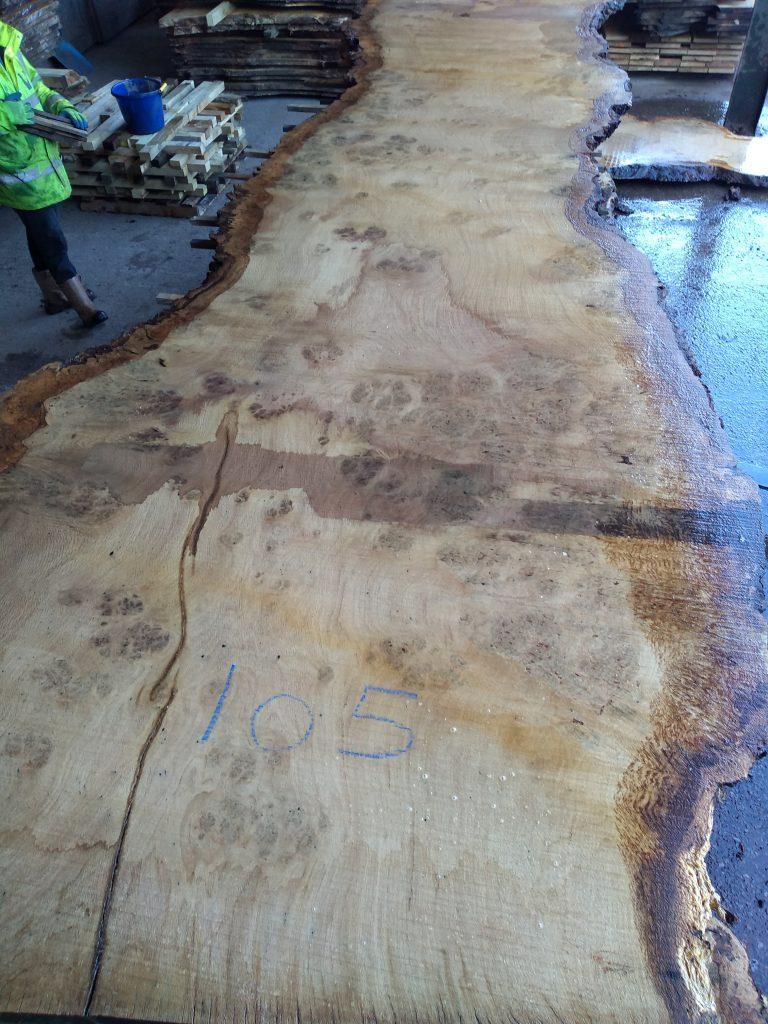 English Pippy Oak Log 3002 Fresh Sawn