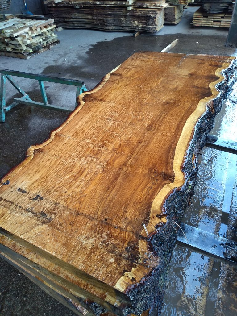 English Brown Oak Log 01420 Fresh Sawn