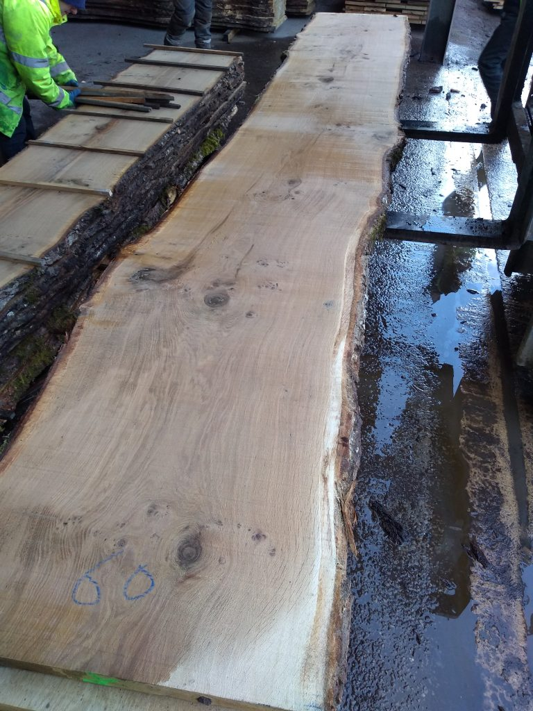 English Pippy Oak Log 3004 Fresh Sawn