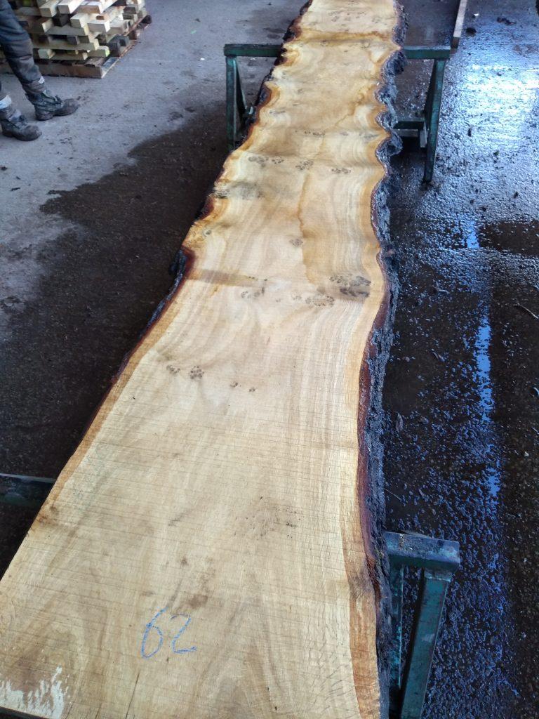 English Pippy Oak Log 9731 Fresh Sawn
