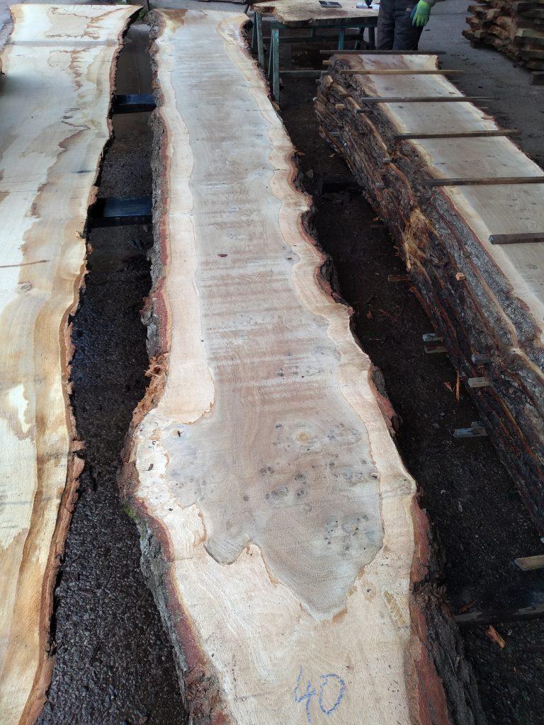 English Pippy Oak Log 01372 Fresh Sawn