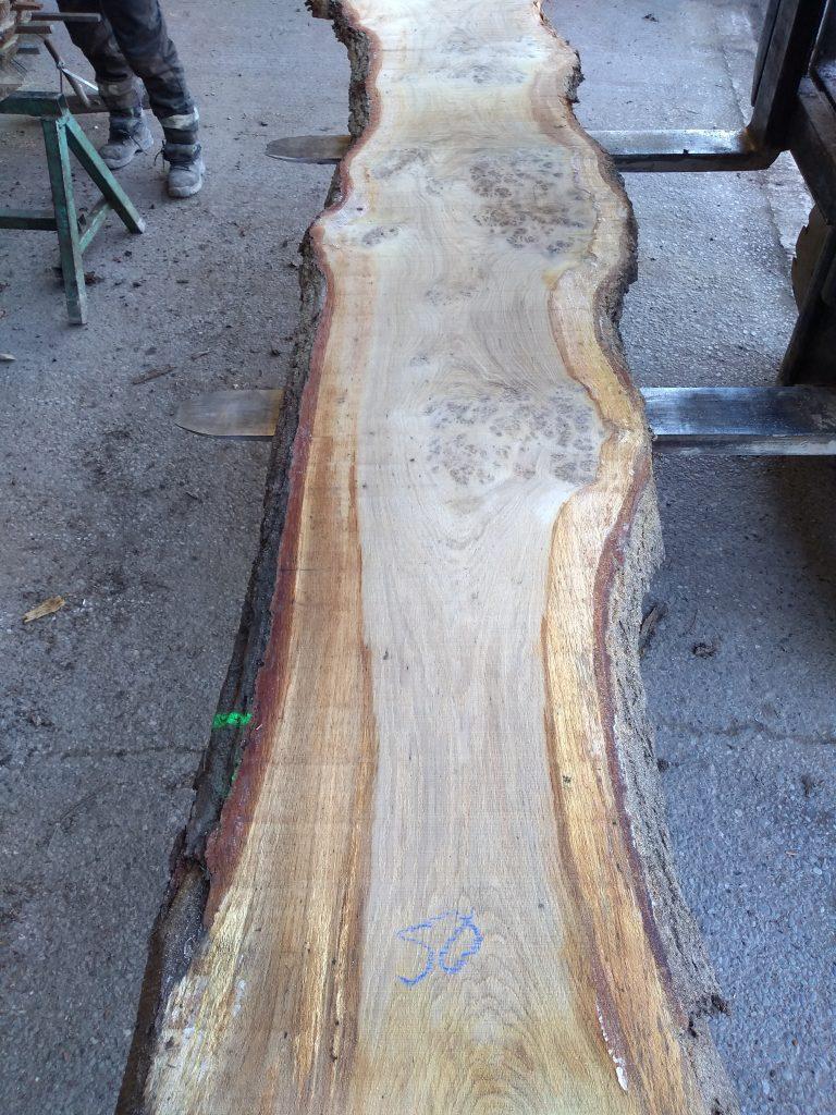 English Pippy Oak Log 9492 Fresh Sawn
