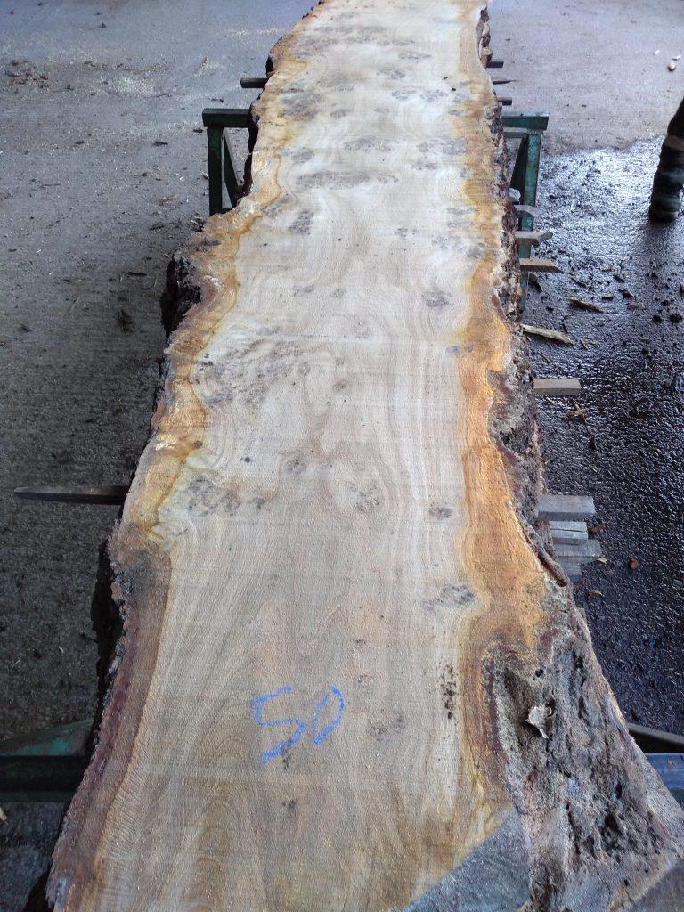 English Pippy Oak Log28 Fresh Sawn