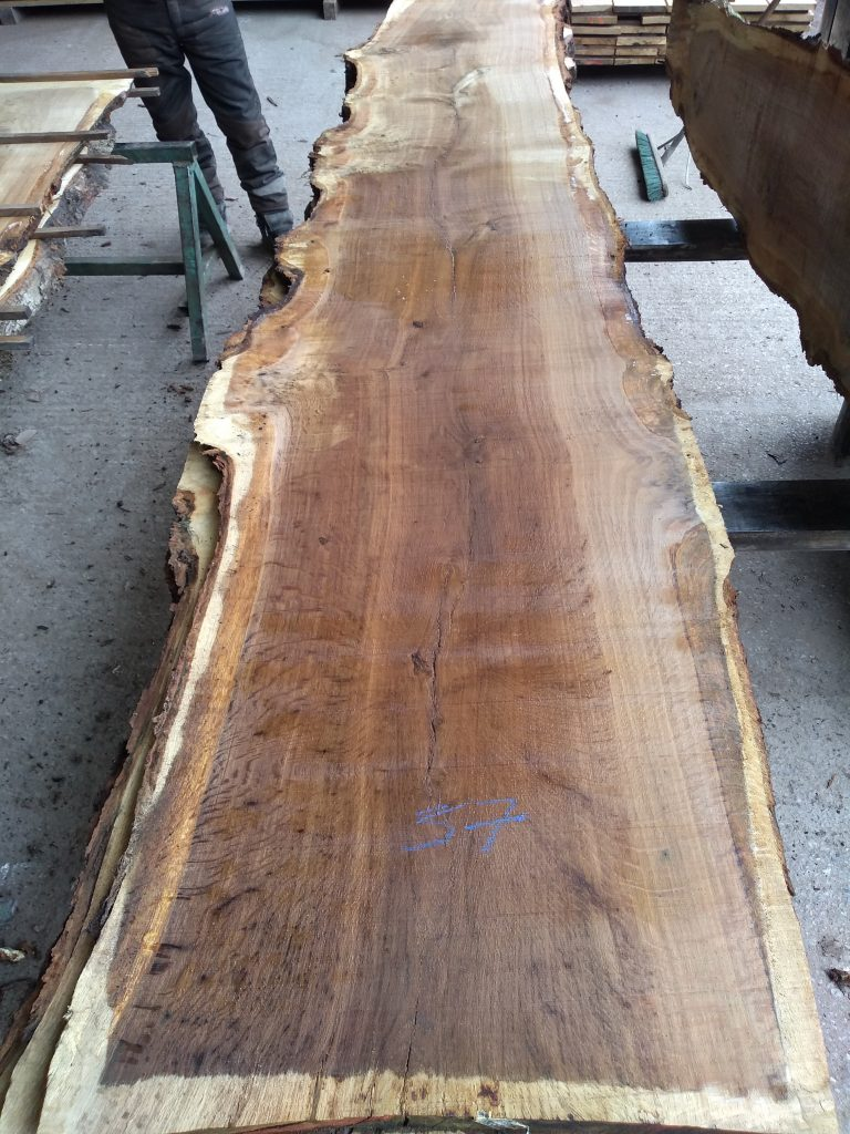 English Pippy Oak Log 9559 Fresh Sawn
