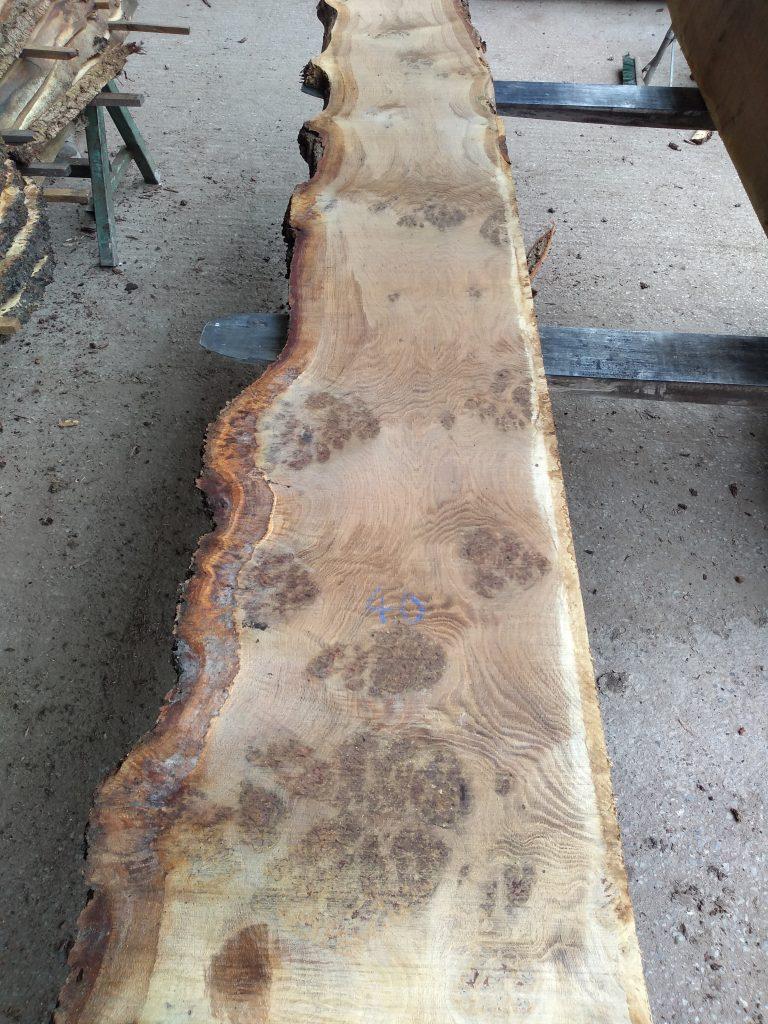 English Pippy Oak Log 60001 Fresh Sawn