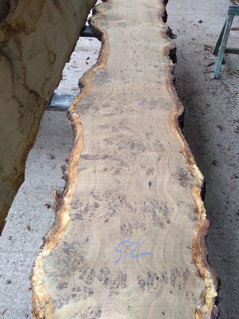 English Pippy Oak Log 3016 Fresh Sawn