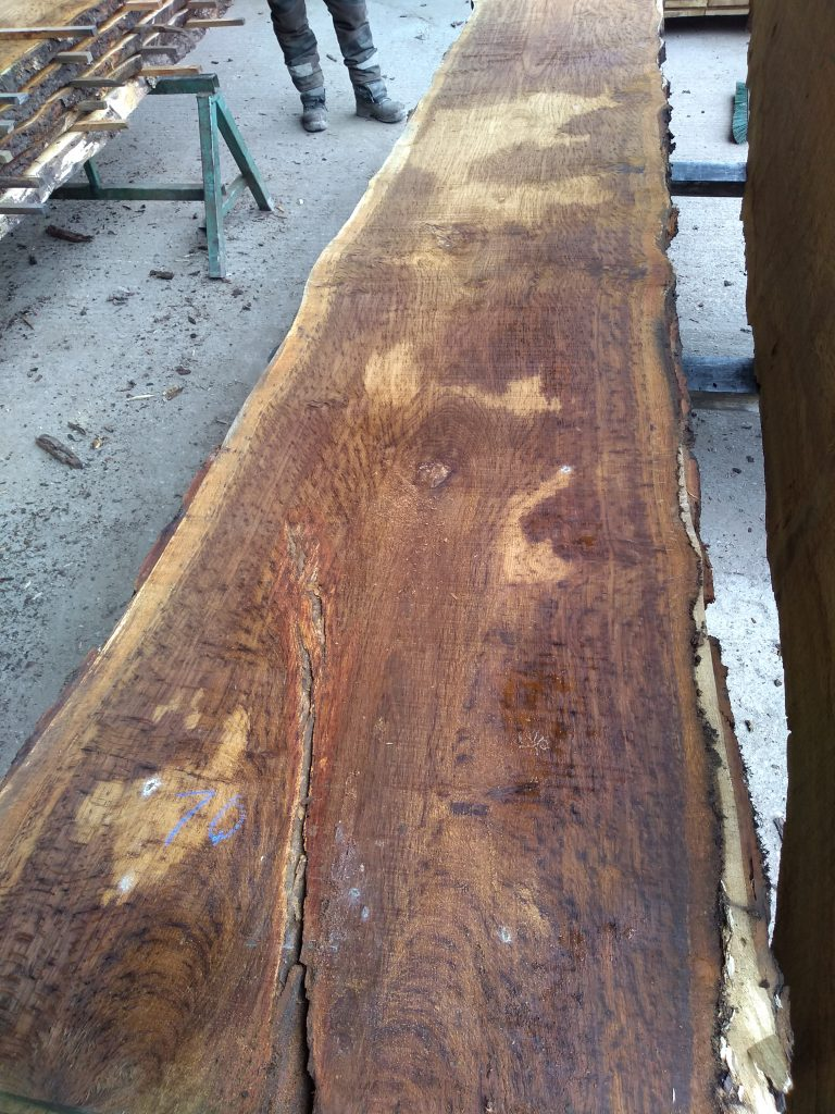 English Pippy Oak Log 3014 Fresh Sawn