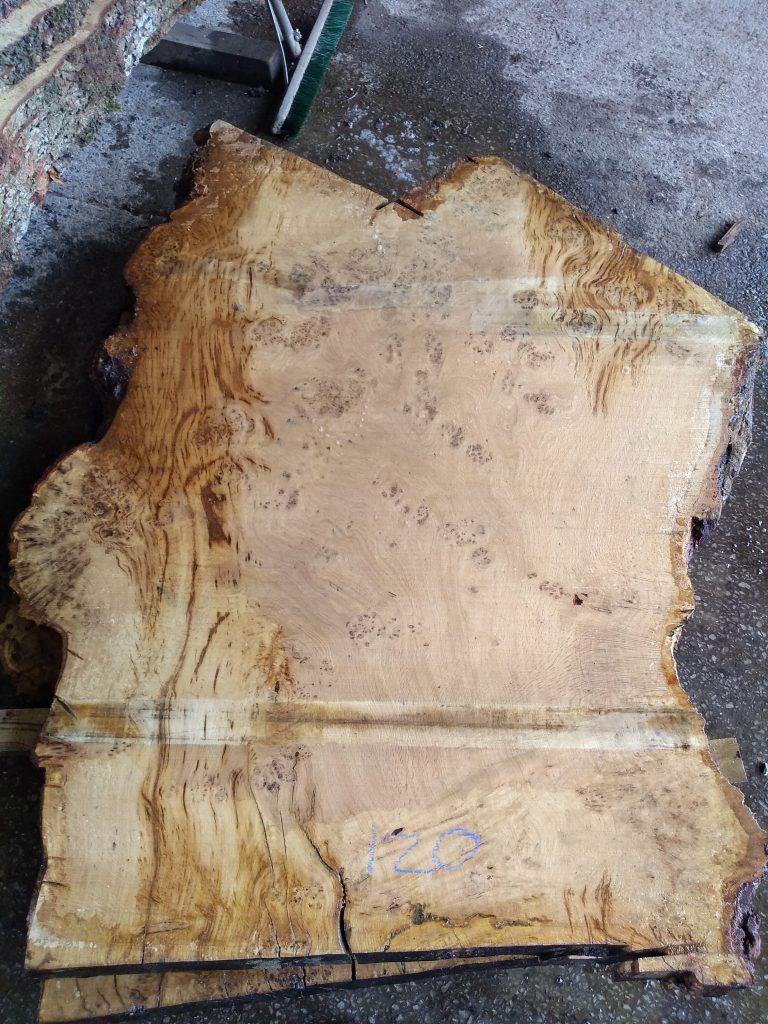 English Pippy Oak Log 3020 Fresh Sawn