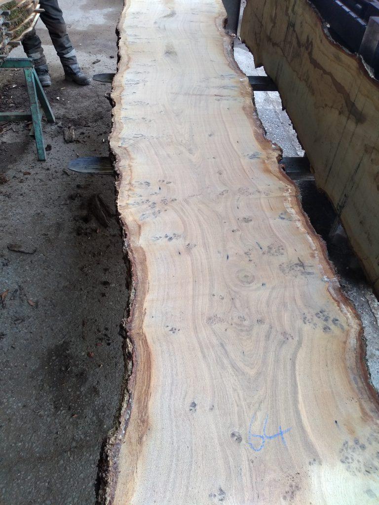 English Pippy Oak Log 9764 Fresh Sawn